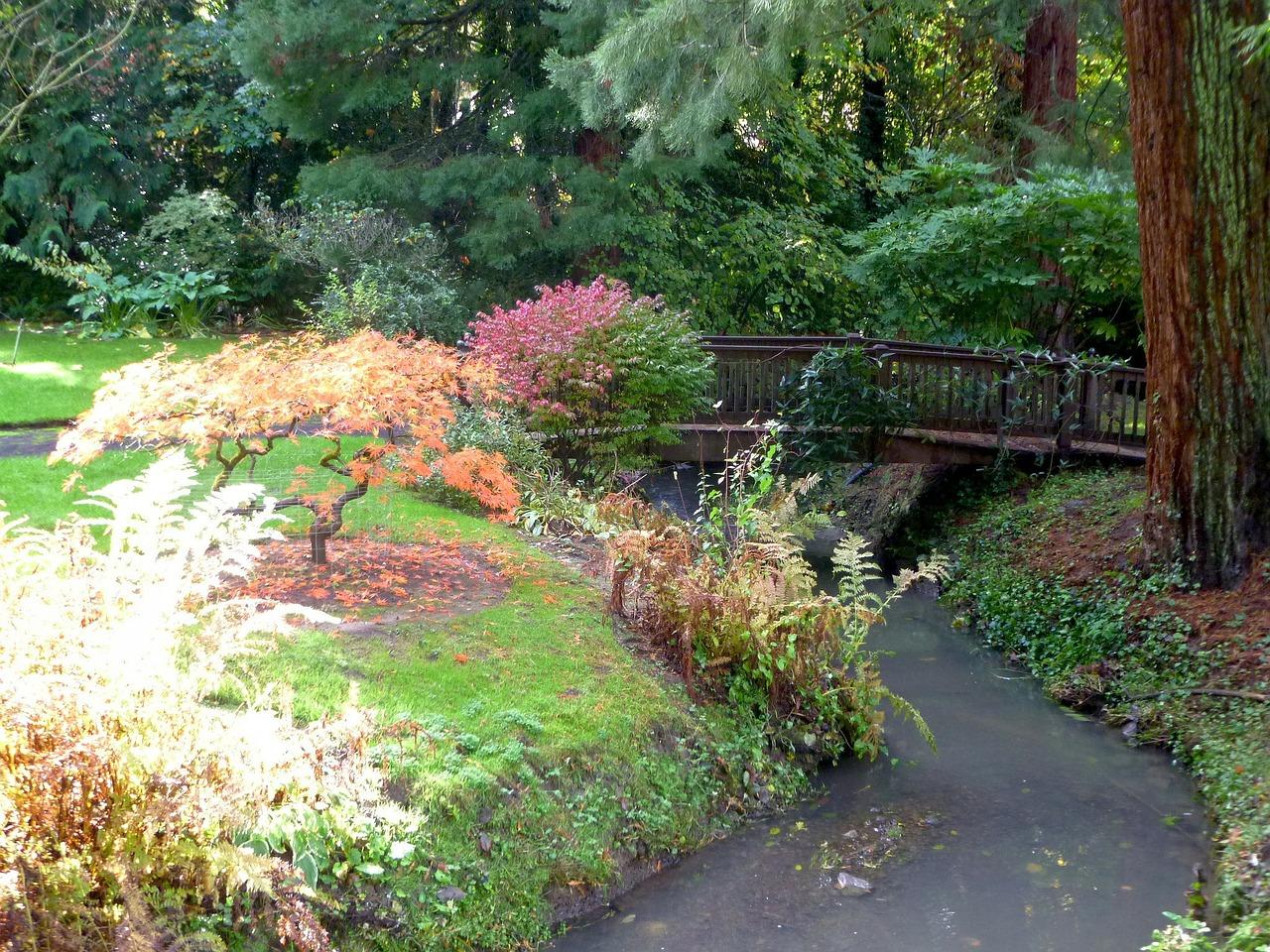 Coin Détente Petit Jardin Zen nos conseils pour avoir un petit jardin japonais chez soi