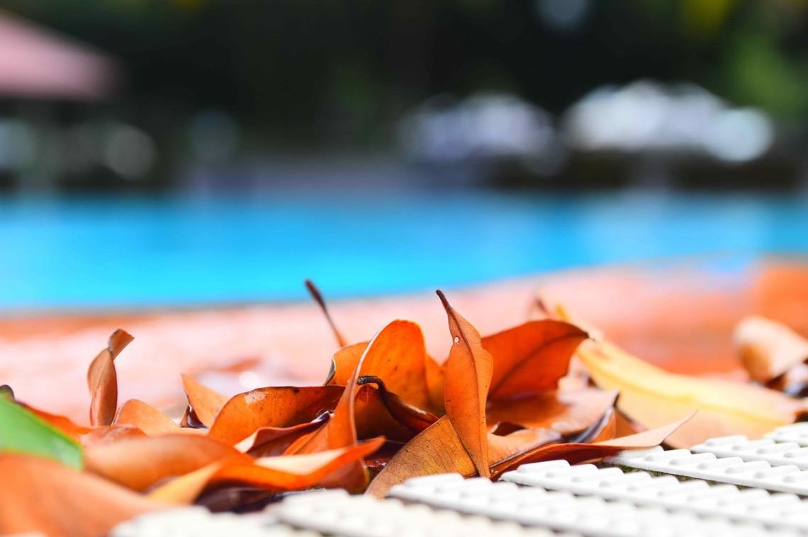 swimming-pool-2461422_1280