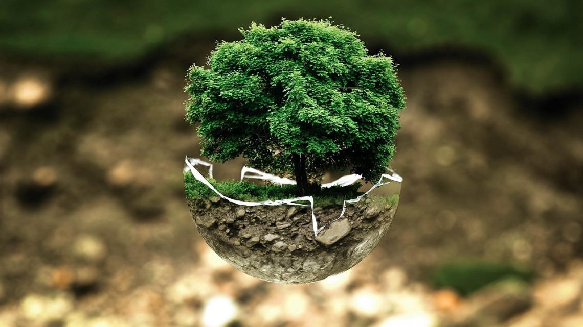 environmental-protection-683437_1280(1).jpg