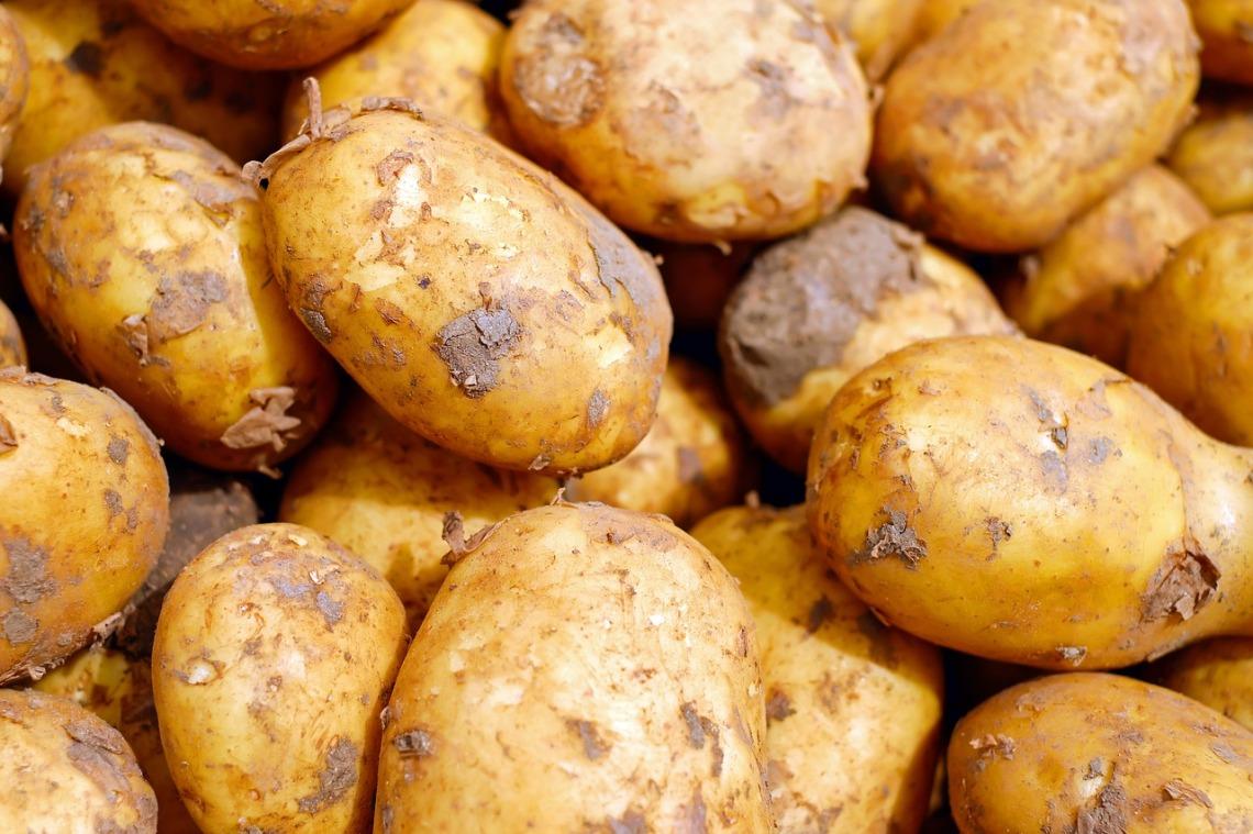 potatoes-2329648_1280